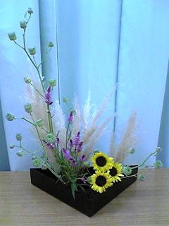 image/mizutanisakura-2006-09-08T20:53:50-1.jpg