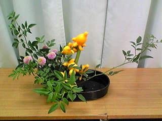 image/mizutanisakura-2006-10-19T20:30:30-1.jpg