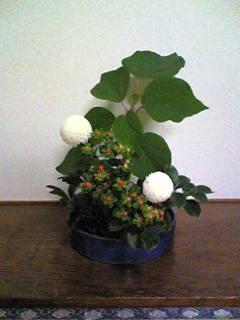 image/mizutanisakura-2006-10-27T22:52:02-1.jpg
