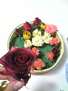image/mizutanisakura-2006-11-15T13:42:02-1.jpg