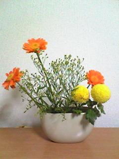 image/mizutanisakura-2006-12-09T20:27:55-2.jpg