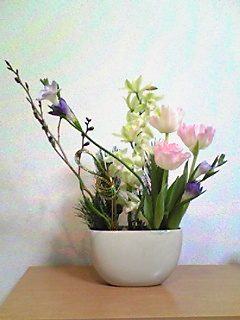 image/mizutanisakura-2006-12-30T22:09:10-1.jpg