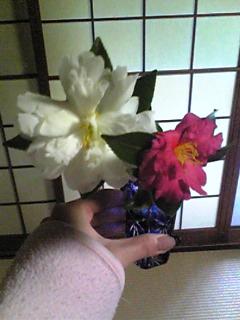 image/mizutanisakura-2007-01-02T12:47:59-1.jpg