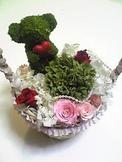 image/mizutanisakura-2007-02-05T22:01:44-6.jpg
