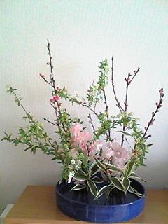 image/mizutanisakura-2007-02-15T16:10:06-1.jpg