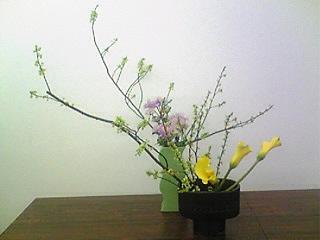 image/mizutanisakura-2007-02-26T17:54:15-1.jpg