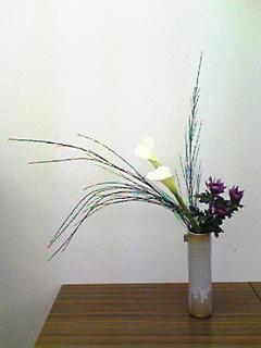 image/mizutanisakura-2007-03-09T21:31:27-1.jpg